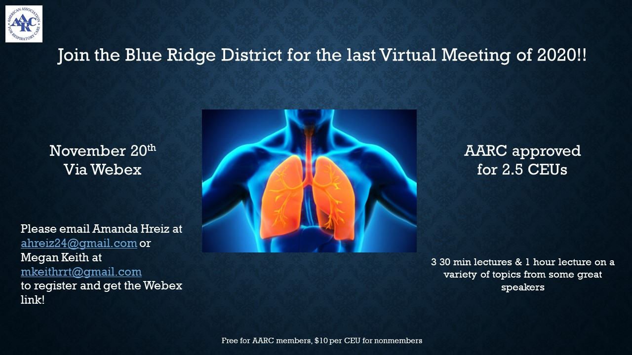 Nov 20th virtual meeting